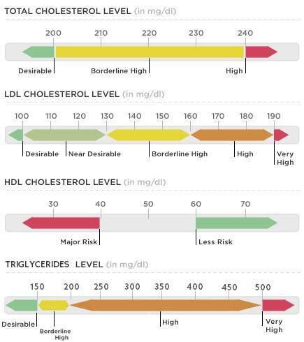 Χοληστερίνη και τριγλυκερίδια: Ποια είναι τα όρια – Υπολογισμός