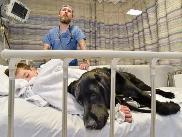 Το λαμπραντόρ που δεν εγκαταλείπει το 9χρονο αυτιστικό αγόρι ούτε στο κρεβάτι του νοσοκομείου.