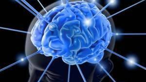 Brain-new