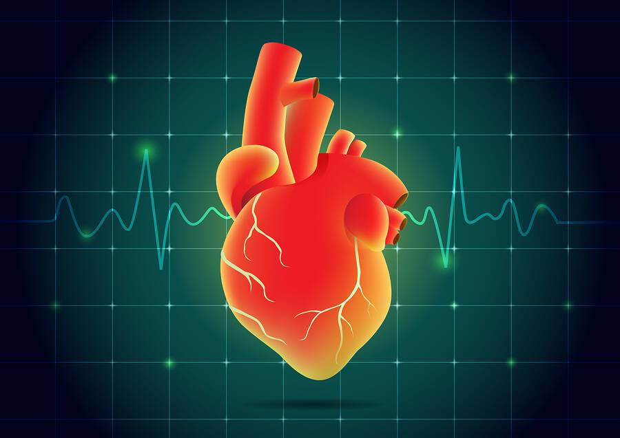 Καρδιακό επεισόδιο: Από ποιο παράγοντα εξαρτάται η επιβίωση