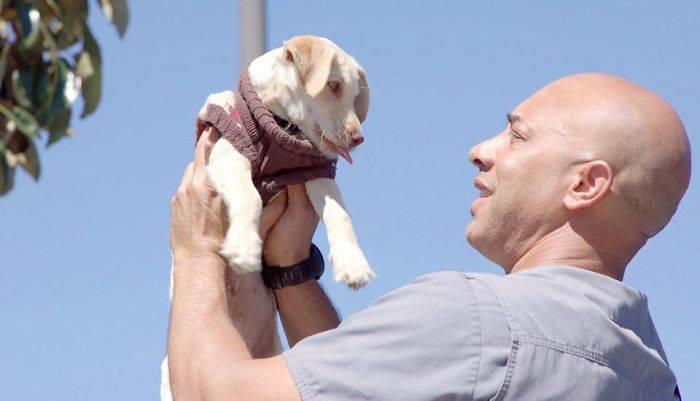 Καλιφόρνια: Κτηνίατρος εξετάζει και θεραπεύει δωρεάν τα κατοικίδια των αστέγων