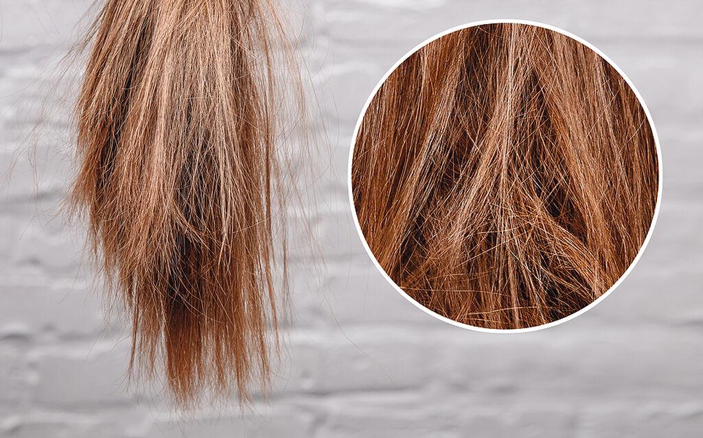 Μαλλιά: Οι πληροφορίες που δίνουν για την υγεία όσο παράδοξο κι αν ακούγεται